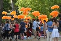 Oranžové balónky
